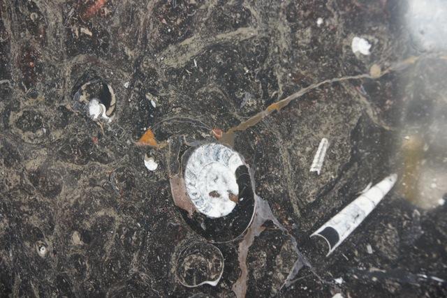 Color Selection Granite Remnants And Marble Saskatoon